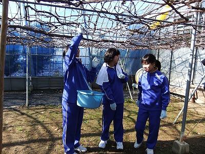 GT広島市立城南中学校_8.jpg