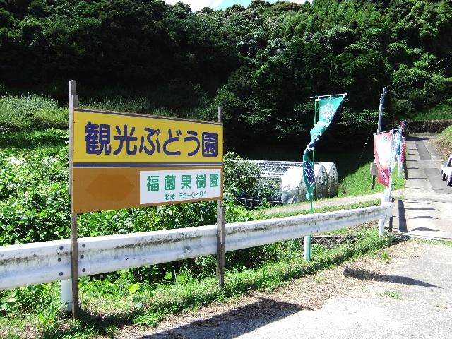 福薗勉農園DSCF0345
